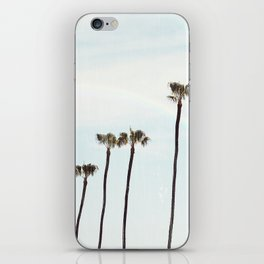 Rainbow Palms iPhone Skin