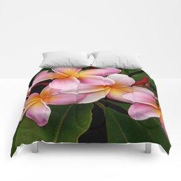 Wailua Sweet Love Comforters