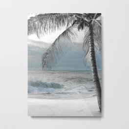 White Coconut Palm Tree Metal Print