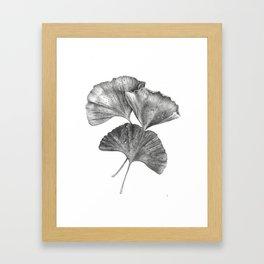 Autumn Ginko I Framed Art Print