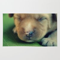 puppy Area & Throw Rugs featuring Puppy by Luiza Lazar