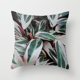 Beleaf in You Throw Pillow