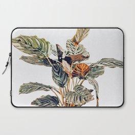 Botany    #illustration #painting #nature Laptop Sleeve