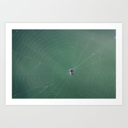In the spider's net Art Print