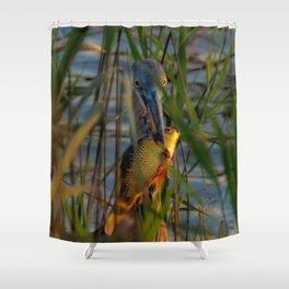 BLUE HERON'S FRIDAY SUNDOWN FISH FEAST Shower Curtain