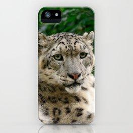 Feb Snep - Snow Leopard iPhone Case