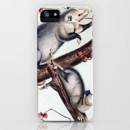 Opossum iPhone Case