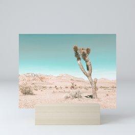 Vintage Desert Scape // Cactus Nature Summer Sun Landscape Photography Mini Art Print