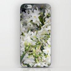 Jonquils iPhone & iPod Skin