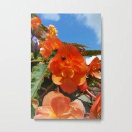 sky, flowers and bee Metal Print