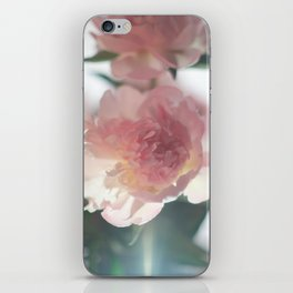 PIVOINE iPhone Skin