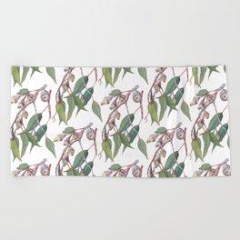 Australian eucalyptus tree branch Beach Towel