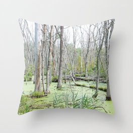Swamp Water and Dead Trees Throw Pillow