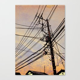wires up Canvas Print
