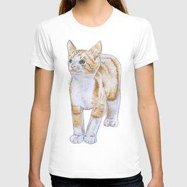 Adorable Kitten T-shirt
