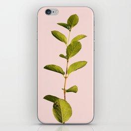 Botanica Art V3 #society6 #decor #lifestyle #fashion iPhone Skin