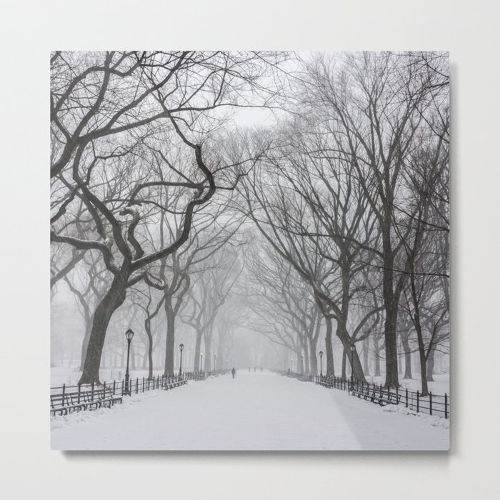Central Park during Blizzard of 2015 Metal Print