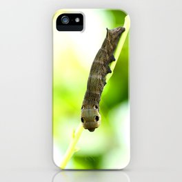 Caterpillar On A Green Plant #decor #society6 #buyart iPhone Case