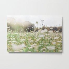 Grow Wild - Flower Photography Metal Print