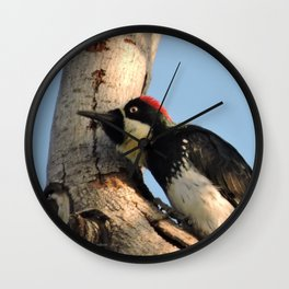 Did You Say HAWK? Wall Clock