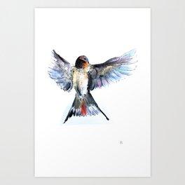 Chilean Swallow Art Print