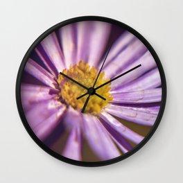 Chevreul's Law of Simultaneous Contrast Wall Clock