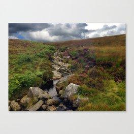 Wicklow Mountains, Republic of Ireland Canvas Print