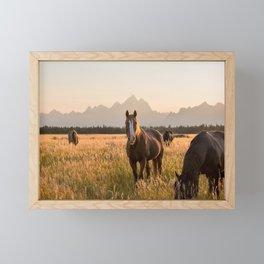 Horses Grazing Below the Tetons Framed Mini Art Print