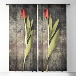 Red Tulip Blackout Curtain