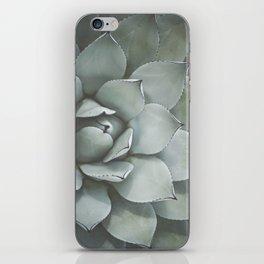 Agave no. 2 iPhone Skin