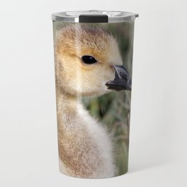 Baby Canada Goose at the Ready Travel Mug