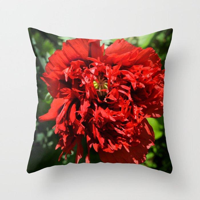 Crimson Peony Poppy Throw Pillow