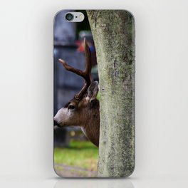 Hiding buck iPhone Skin