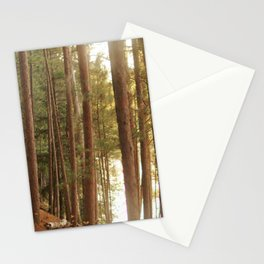 Red pine forest Stationery Cards