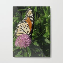 Monarch On A Break Metal Print