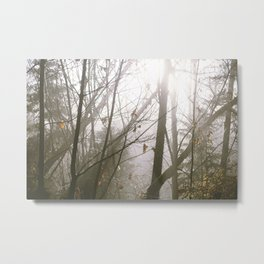 Tsable River Metal Print