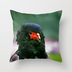 Bateleaur Eagle Throw Pillow