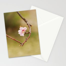 Spring Changdeokgung palace, Seoul, Korea Stationery Cards