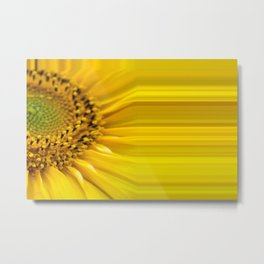 Sunflowers stripes - yellow package Metal Print