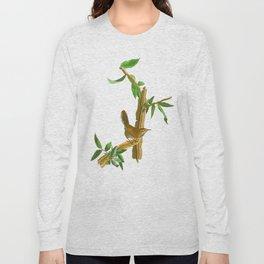 BEWICK'S LONG TAILED WREN Long Sleeve T-shirt