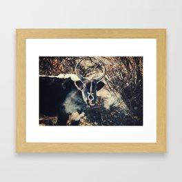 Asia 12 Framed Art Print