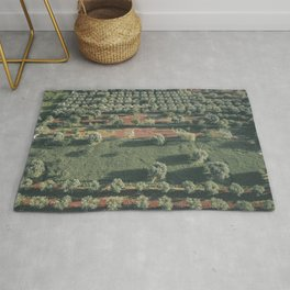 Italy Landscape, Drone photos, aerial photography, Puglia, countryside Rug