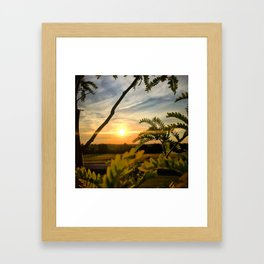 Sunrise through the trees Framed Art Print