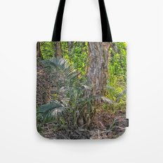 Beautiful rain forest growth Tote Bag