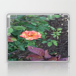 Pink Flower #1 Laptop & iPad Skin