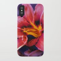 lily iPhone & iPod Cases featuring  Lily. by Mary Berg