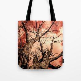 The Reaching Red Branch Tree Art in Nature Modern Forest Abstract Tote Bag