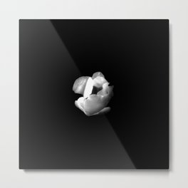 white flower 16- black and white Metal Print