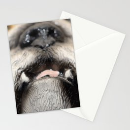 love, print, bulldog, canine, collection, icons, portrait, breed, pedigree, face, puppy, cartoon, ba Stationery Cards