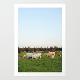 Cows In The Country I Art Print